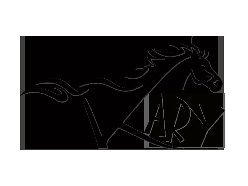 logo kary