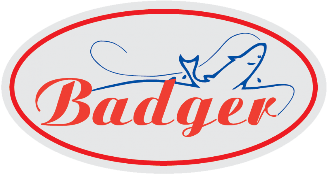 800x600 badger logo